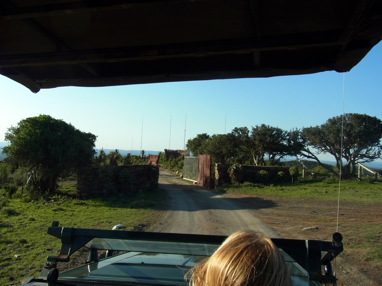 jeep1_k